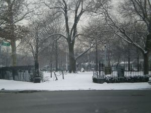 snow days in brooklyn, things to do in brooklyn during the winter, real estate agents in brooklyn, brooklyn ny