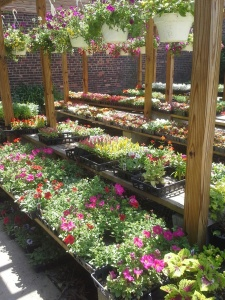 garden supply stores in brooklyn