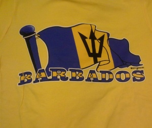 bajans in Brooklyn , barbados festival day in canarsie brooklyn