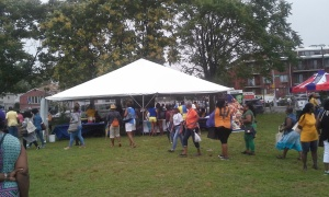 Barbados festival day 2016 canarsie brooklyn